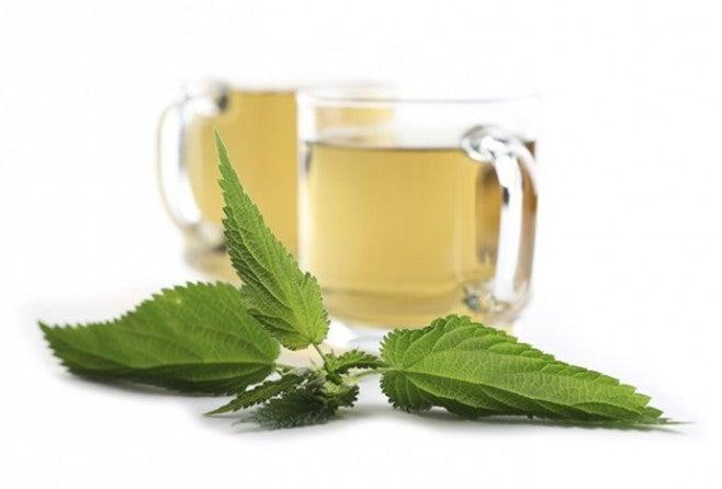 Té verde con hojas