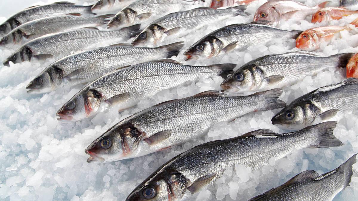 el anisakis del pescado
