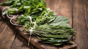 hierbas para la salud